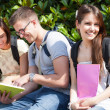 Group of students — Stock Photo #24039957