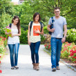 Group of students — Stock Photo #24039993