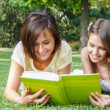 Students reading a book — Stock Photo #24040091