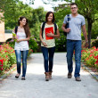 Group of students — Stock Photo #24040159