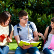 Group of students — Stock Photo #24040211