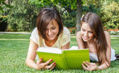 Students reading a book — Stockfoto
