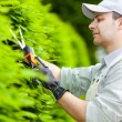 Gardener pruning an hedge — Stock Photo #27203857
