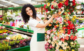 Woman at work in a greenhouse — Stock Photo