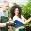 Workers examining plants — Stock Photo #30024889