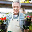 Happy gardener in a greenhouse holding two vases of flowers — Stock Photo