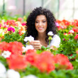Young woman looking at flowers in a greenhouse — Foto Stock
