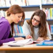 People studying together in a library — Stock Photo #30026599