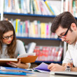 People studying together in a library — Stock Photo #30026711