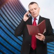 Mature businessman taking notes in his office at the phone — Stock Photo