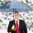 Money rain — Stock Photo #30136023