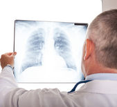 Doctor looking at a radiography — Stock Photo