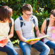 Students talking in a park — Stock Photo #30861111
