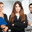 Business team — Stock Photo #30861209