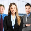 Business team — Stock Photo #30861947