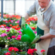 Worker watering plants — Stock Photo