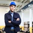Engineer at work — Stock Photo #31524227