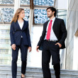 Business partners — Stock Photo #31524353