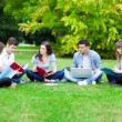 Group of students studying outdoors — Stock Photo #32389747