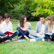 Students studying outdoor — Stock Photo #32390997