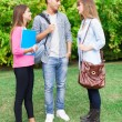 Students talking in a park — Foto Stock