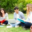 Group of students studying outdoor — 图库照片