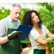 Workers examining plants in a greenhouse — Stock Photo
