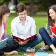 Students studying outdoors — Stok fotoğraf