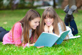 Students studying in the park — Stock Photo