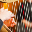 Stock Photo: Womplaying harp