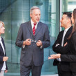 Group of business people — Stock Photo #35173545