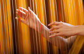 Woman playing the harp — Stock Photo