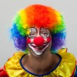 Funny clown — Stock Photo #36564693