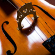 Violin closeup — Stock Photo