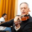 Senior violinist — Stock Photo