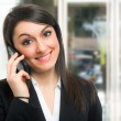 Portrait of a smiling businesswoman — Stock Photo