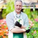 Mature gardener — Stock Photo