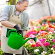 Worker watering plants — Stock Photo #38776697