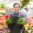 Gardener in greenhouse — Stock Photo #38776717