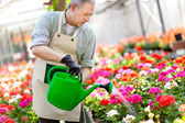 Worker watering plants — Stock Photo