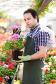 Man holding a flower pot — Stock Photo