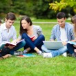 Students studying outdoor — Stock Photo