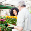Stock Photo: Greenhouse worker giving plant to customer