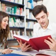 People studying in a library — Stock Photo #41979079