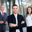 Business team — Stock Photo #42393041