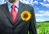 Businessman keeping a sunflower in his pocket — Stock Photo