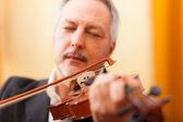 Man playing his violin — Stock Photo
