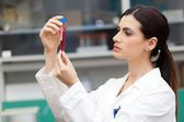 Woman at work in laboratory — Stock Photo