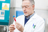 Scientist looking at a test tube — Stock Photo