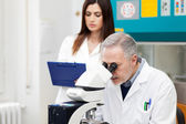 Researcher at work in a laboratory — Stock Photo